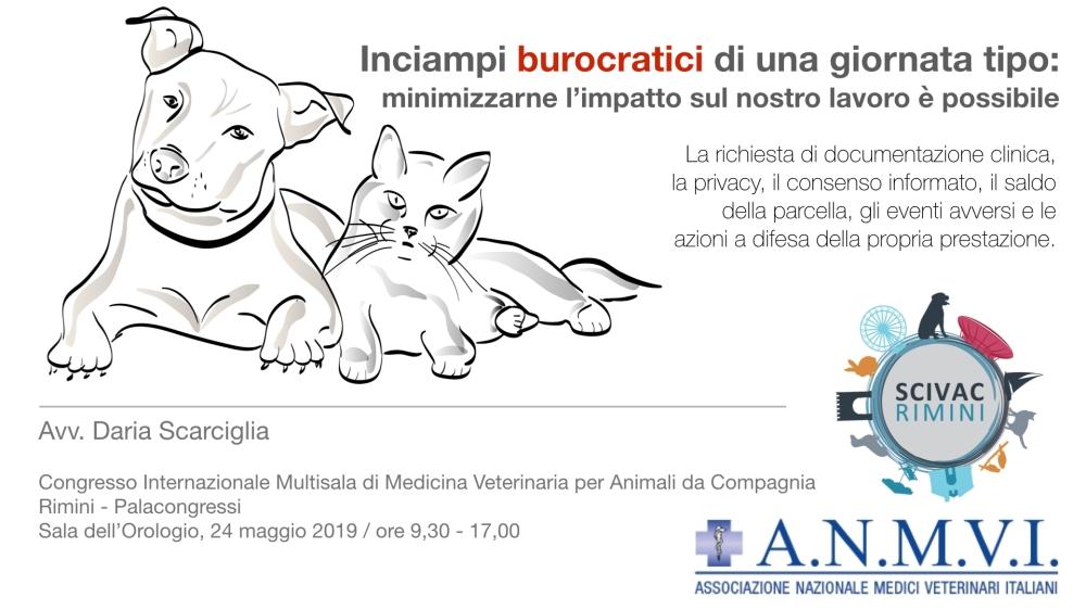 Scivac Rimini 2019.001